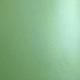 FOLIA IKONOS PROFIFLEX FROSTED FPT GREEN P80+ 1,27x25